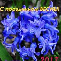 С Праздником Весны! :: Владимир Клюев