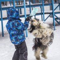 А, ну ка, обними!!! :: Лариса Батурова