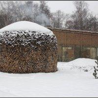 Пока еще падал снег :: Михаил Розенберг