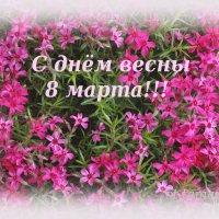 Поздравляю с весенним праздником!!! :: Тамара (st.tamara)