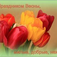 С Праздником, милые, добрые, нежные :: Татьяна Ломтева