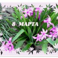 С праздником весны любимые подруги!!! :: Тамара (st.tamara)