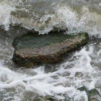 Волна :: Наталья Дорошенко