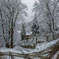 Первый снег. :: Владимир Лобанов