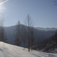 Солнечные горы :: Татьяна Степанова