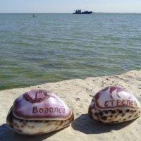 Водолей и Стрелец готовятся плыть в житейском море... :: Алекс Аро Аро
