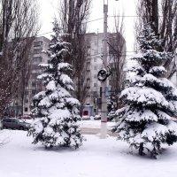 КОНЕЦ  ЗИМЫ :: Анатолий Бугаев