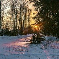 Луч зимнего солнца... :: Александр Тулупов