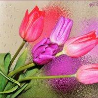 Весна пришла..... :: °•●Елена●•° Аникина♀