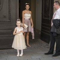 Нет, это я принцесса! :: Борис Гольдберг