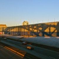тень от Большеохтинского моста (мост Петра Великого) :: Елена