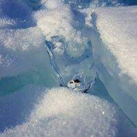 Холодная нежность Байкала. :: Елена Савчук