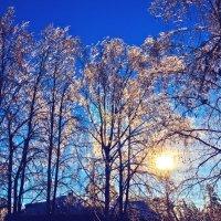 Солнце :: Евгений Мамаев