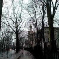 Дождливый Петербург. :: Светлана Калмыкова