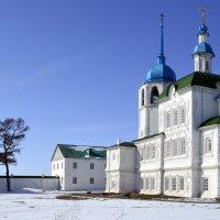 Мужской монастырь в марте :: Александр Ефремов
