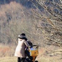 На весенней прогулке. :: Paparazzi