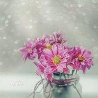 Розовые хризантемы :: Оксана Анисимова
