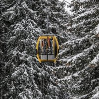 Christmas decorations(елочное украшение) :: Dmitry Ozersky