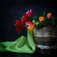 Корзина с тюльпанами :: Галина Galyazlatotsvet
