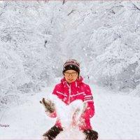 Снежное настроение. :: Anatol Livtsov