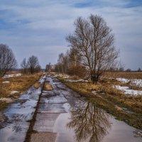 По бетонке к Клязьме :: Андрей Дворников
