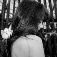Дикая роза. :: Ирина я