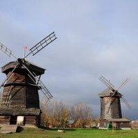 Дуйте,дуйте ветры в поле... :: Татьяна Алферова