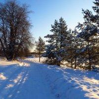 зимняя дорога. :: ВАЛЕНТИНА ИВАНОВА