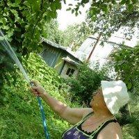 Поливаем сад и огород :: Дмитрий Никитин