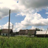 У деревни Жёлтиково. :: Владимир Драгунский