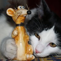Кошка и мишка :: Oleg Svintszov