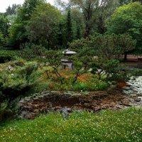 Японский сад :: Андрей Бондаренко