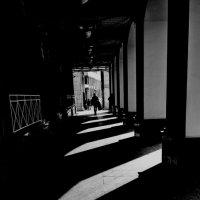Чёрное и белое :: Tanja Gerster