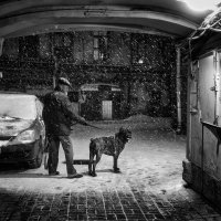 Снегопад... :: Анна Корсакова