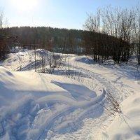 Солнечный март :: Ольга