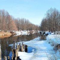 Река Серёжа в марте :: Николай Масляев