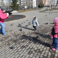 Чумачечая весна. :: Татьяна Помогалова