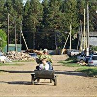 Деревенское такси :: Leonid Rutov