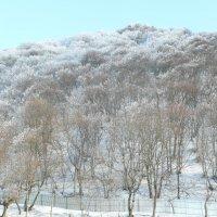 Зима в горах Северного Кавказа. :: Виктор