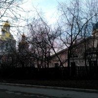 Крестовоздвиженский собор и Казачья церковь в Петербурге. :: Светлана Калмыкова