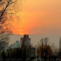 мартовский вечер в Гомеле :: Александр Прокудин