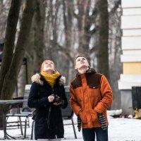 """""""Эй, белки, где вы?"""" :: Владимир Безбородов"""