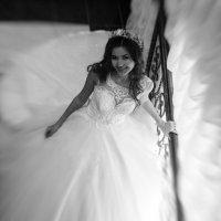 Свадебное фото :: Dmitriy Predybailo