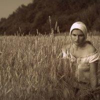 Покос :: Елена Яшкова