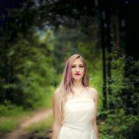 в лесу..... :: Inessa Shabalina