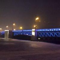 Дворцовый мост вечером :: Митя Дмитрий Митя