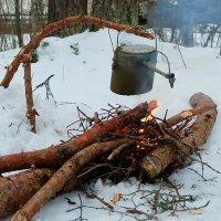 Вкусняшка готовится :: Олег Гаврилов