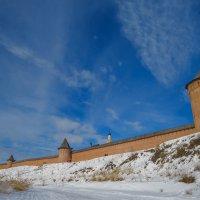 У стен Спасо-Ефимиева монастыря :: Сергей Цветков