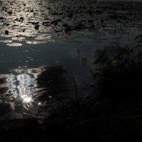 Вода и небо :: Мари Георгиевская