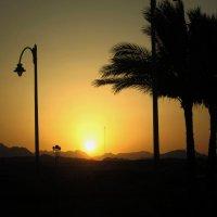Sharm-el-Sheikh :: Александра Кузнецова